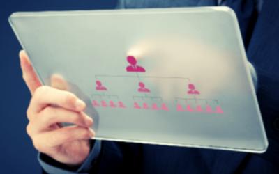 Wświecie uprawnień SAP – zbiór pojęć
